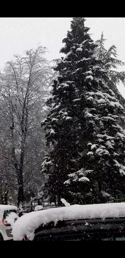 Snow in Milan!